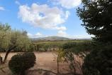 Pinoso Villa with pool 2km to Town  in Alicante Property