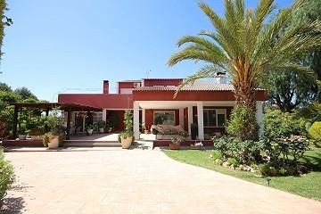 Villa Rosa - Large Detached Villa with a pool in Loma Bada
