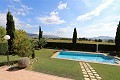Spectacular  country house with pool and its own vineyard  in Alicante Property
