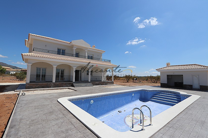 New build villa 195m2 with pool and plot in Alicante Property