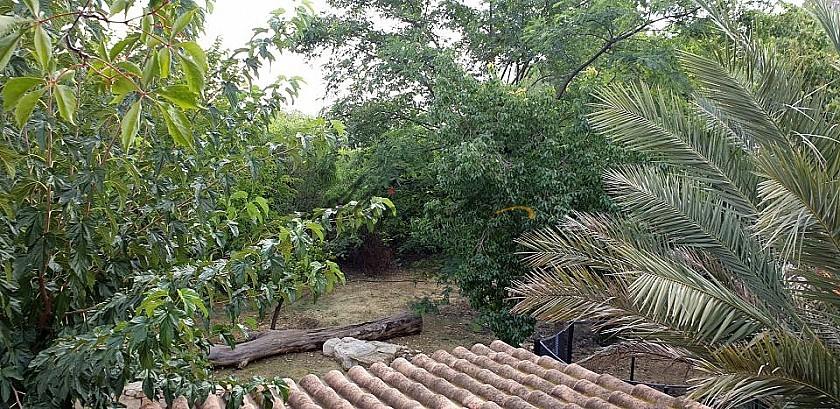 A Hidden Gem Of A Villa in Alicante Property