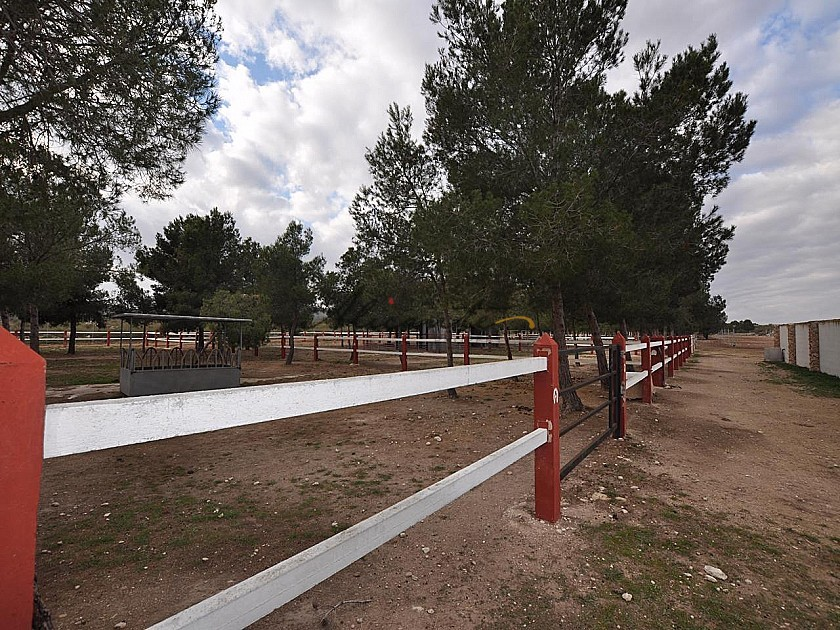 Large Stable complex - suitable to go with 13415 in Alicante Property