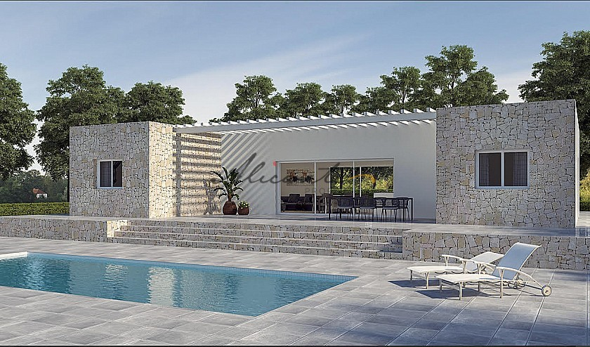 New build with pool and plot walk to Large town in Alicante Property