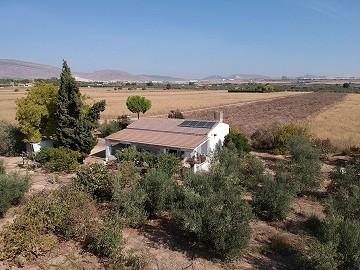 Detached Villa in Caudete with solar panels